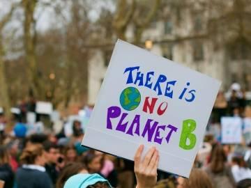 El acceso público a la información medioambiental es un requisito fundamental para la evaluación ambiental de planes, programas y proyectos