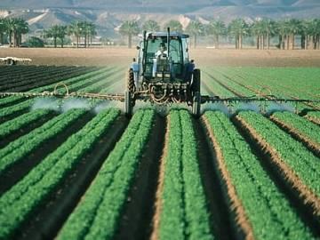 Los pesticidas en el control de las plagas