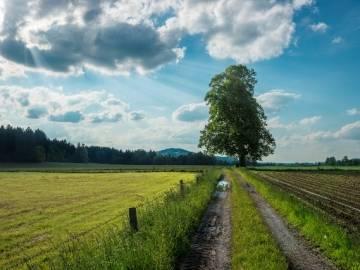 Bancos de Hábitat: valoración económica de los ecosistemas naturales