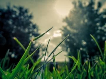 Resumen de la modificación de la Ley de Patrimonio Natural y Biodiversidad