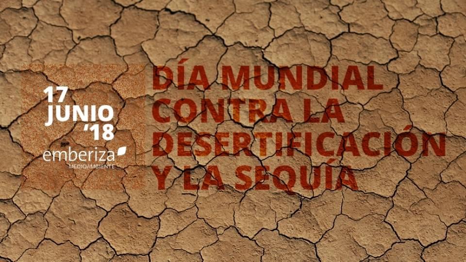 ¿Cómo afecta la desertificación a la población mundial?