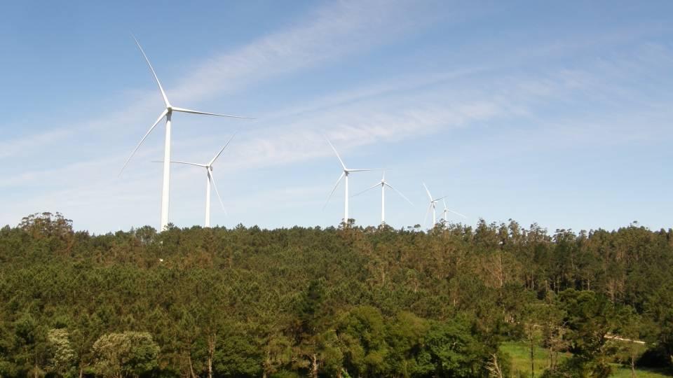 Vista general Parque Eólico (fuente: EMBERIZA ESTUDIOS AMBIENTALES S.L.)