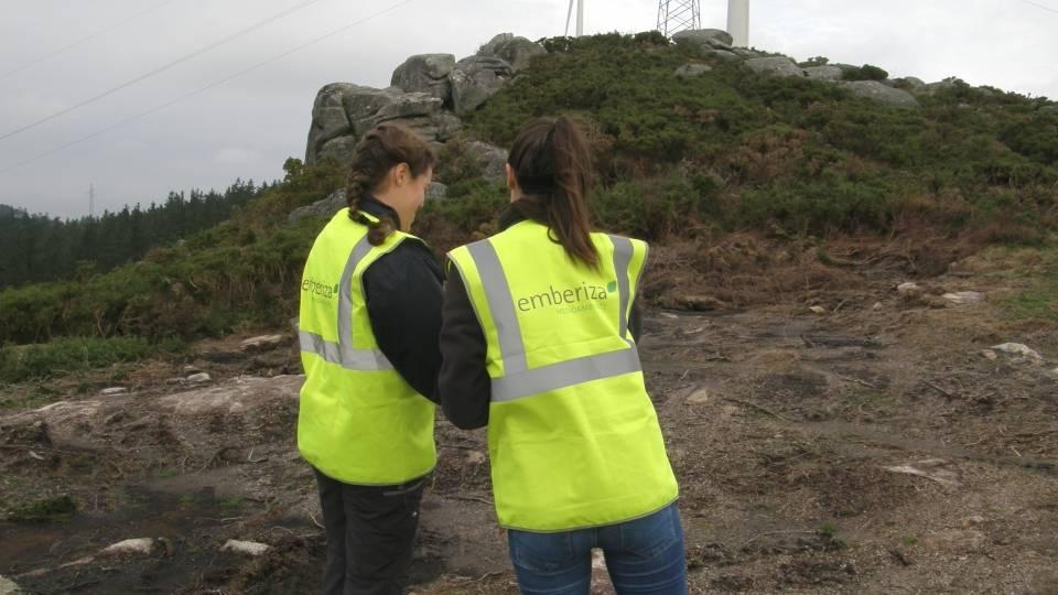 Dirección y Vigilancia Ambiental en Obra de Parques Eólicos