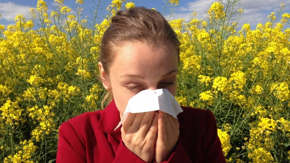 Alergia al polen o polinosis